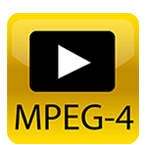 MP4.png